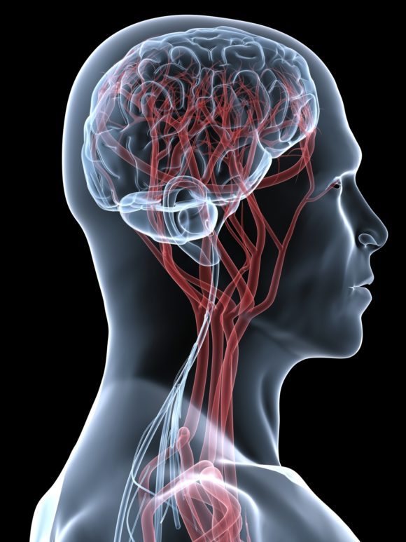 МРТ шейного отдела позвоночника для визуализации хрящевых структур