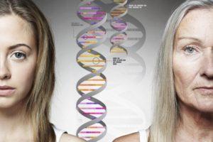 гены передают